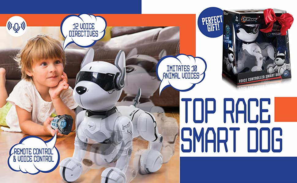 126cfae7 d3e2 4696 bf7b b86fb6fbdef6.  CR0,1,2656,1643 PT0 SX970 V1    - Top Race Remote Control Robot Dog Toy for Kids, Interactive & Smart Dancing to Beat Puppy Robot, Act Like Real Dogs, Gift Toy for Girls & Boys Ages 2,3,4,5,6,7,8,9,10 Years