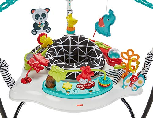 51Vn6COUg4L - Fisher-Price Animal Wonders Jumperoo, White