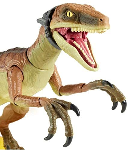 41wwwmEZRVL. AC  - Jurassic World Velociraptor Echo 6-inches (15.24 cm) Collectible Action Figure with Movie-Authentic Detail, Movable Joints and Figure Display Stand; for Ages 8 and Up