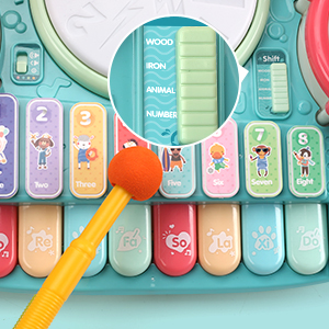 102187a2 f445 46f7 a1e4 dd8c11d8e003.  CR0,0,300,300 PT0 SX300 V1    - Besandy 5 in 1 Musical Instruments Toys - Kids Electronic Piano Keyboard Xylophone Drum Toys Set with Light 2 Microphone for Suitable for Children Over 3 Years Old