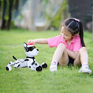 a48d0433 8501 42df 853e a4abc632bf7d.  CR0,2,300,300 PT0 SX300 V1    - Contixo R4 IntelliPup Robot Dog, Walking Pet Toy Robots for Kids, Remote Control, Interactive & Smart Dancing Dance, Voice Commands, RC Dog for Gift Toy for Girls & Boys Ages 2,3,4,5,6,7,8,9,10 Years